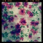 Taira-Camisaria-primavera-verão-2013-flores